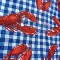 Sew Dolly Clackett, what dress to wear to a lobster picnic lunch?